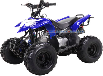 Mini ATVs T-Rex All Terrain Vehicles with Gas Powered Engines